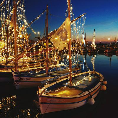 Pointus illuminés à Noël