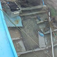 Pointu coulé dans la lagune du Brusc